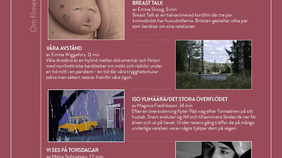 Välkommen på digital Norrbottenspremiär!