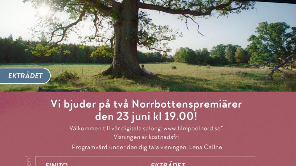 Två digitala Norrbottenspremiärer!